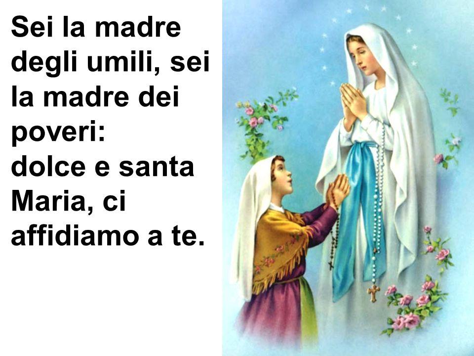 Sei la madre degli umili, sei la madre dei poveri: dolce e santa Maria, ci affidiamo a te.