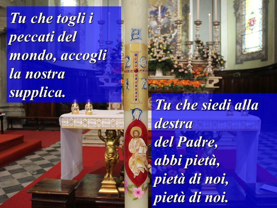 Tu che togli i peccati del mondo, accogli la nostra supplica. Tu che siedi alla destra del Padre, abbi pietà, pietà di noi, pietà di noi.