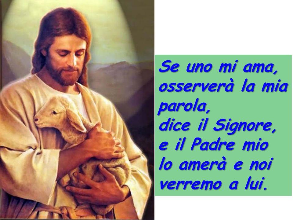 Se uno mi ama, osserverà la mia parola, dice il Signore, e il Padre mio lo amerà e noi verremo a lui.