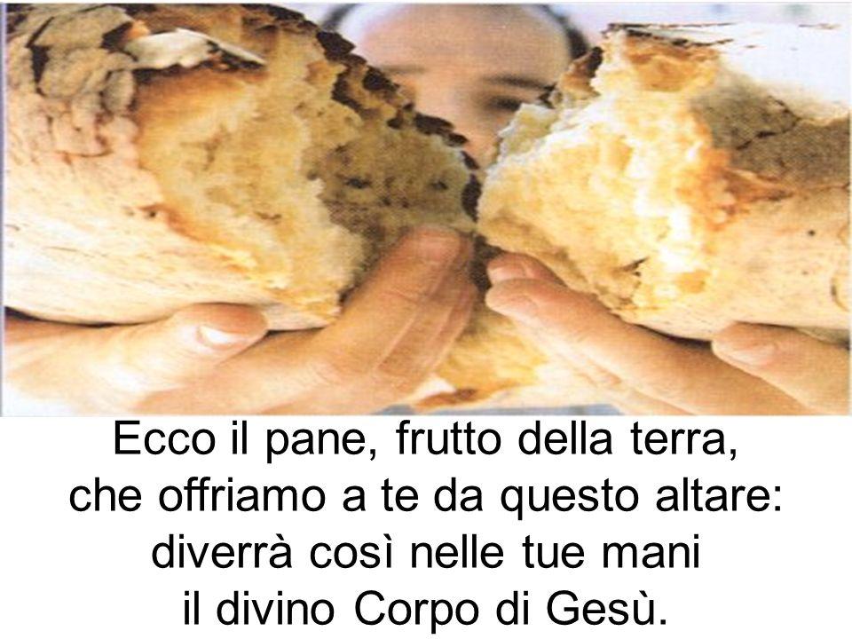 Ecco il pane, frutto della terra, che offriamo a te da questo altare: diverrà così nelle tue mani il divino Corpo di Gesù.