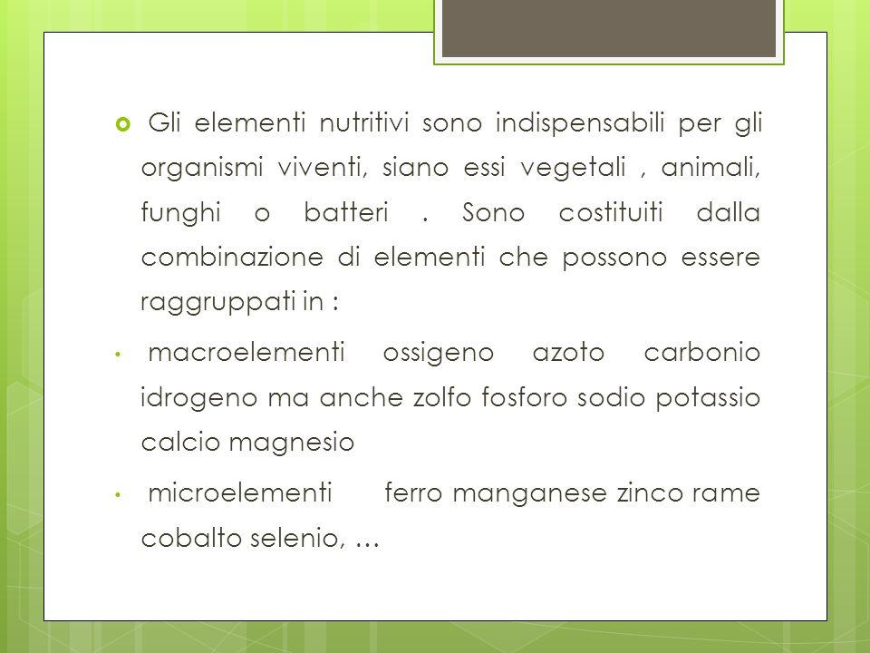 Gli elementi nutritivi sono indispensabili per gli organismi viventi, siano essi vegetali, animali, funghi o batteri. Sono costituiti dalla combinazio