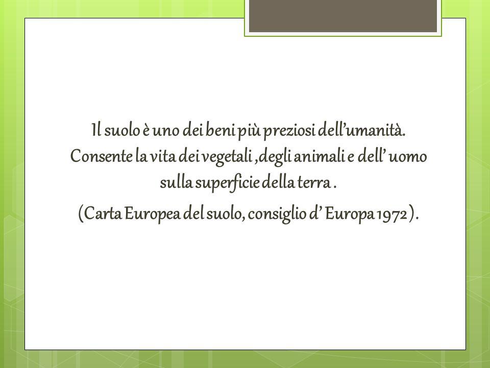 Il suolo è uno dei beni più preziosi dellumanità. Consente la vita dei vegetali,degli animali e dell uomo sulla superficie della terra. (Carta Europea