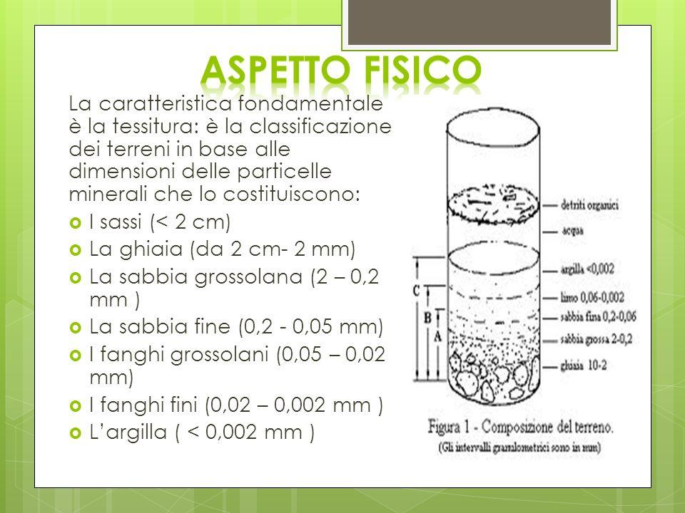 La caratteristica fondamentale è la tessitura: è la classificazione dei terreni in base alle dimensioni delle particelle minerali che lo costituiscono