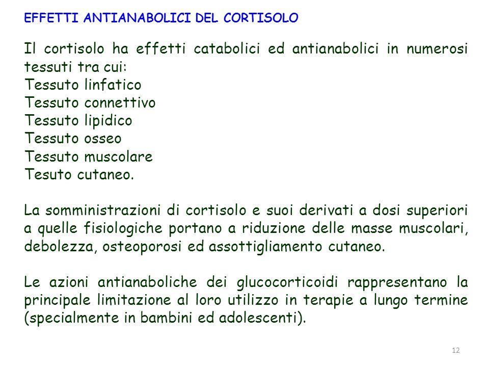 12 EFFETTI ANTIANABOLICI DEL CORTISOLO Il cortisolo ha effetti catabolici ed antianabolici in numerosi tessuti tra cui: Tessuto linfatico Tessuto conn