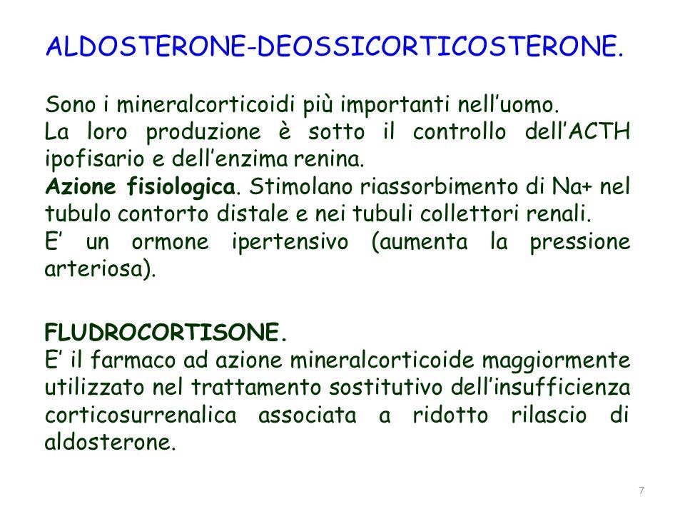 7 ALDOSTERONE-DEOSSICORTICOSTERONE. Sono i mineralcorticoidi più importanti nelluomo. La loro produzione è sotto il controllo dellACTH ipofisario e de