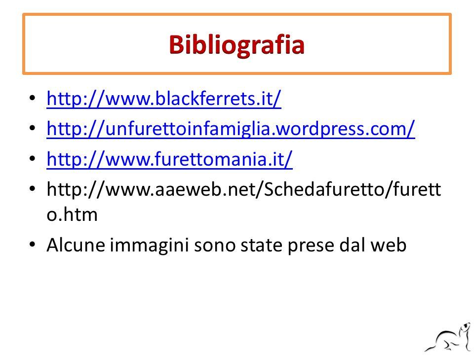 http://www.blackferrets.it/ http://unfurettoinfamiglia.wordpress.com/ http://www.furettomania.it/ http://www.aaeweb.net/Schedafuretto/furett o.htm Alc