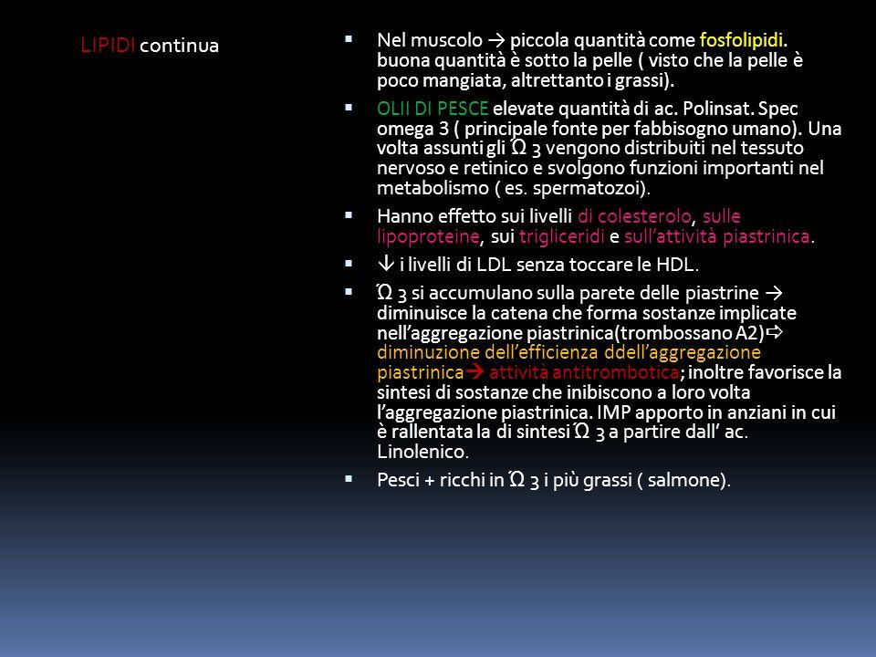 CONTENUTI NUTRIZIONALI DEL PESCE PROTEINE LIPIDI Tutte le specie contengono una notevole quantità di proteine ad elevato valore biologico (amminoacidi