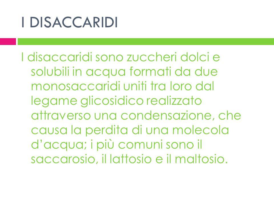 I DISACCARIDI I disaccaridi sono zuccheri dolci e solubili in acqua formati da due monosaccaridi uniti tra loro dal legame glicosidico realizzato attr