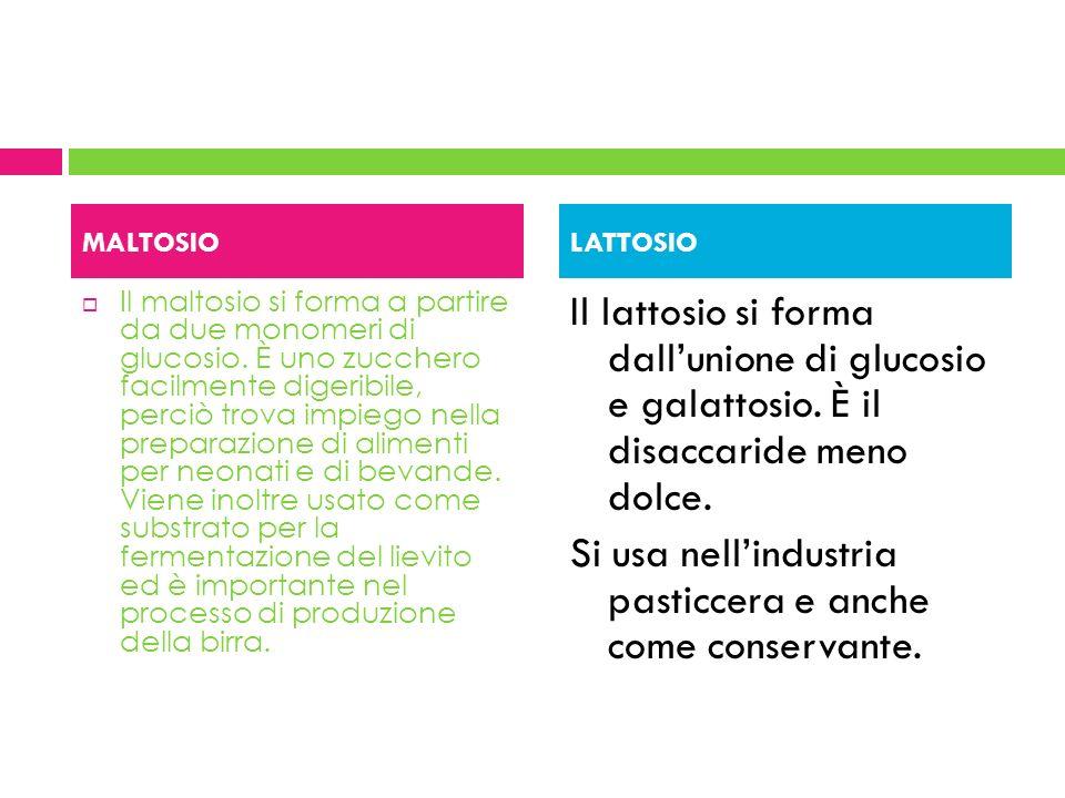 Il maltosio si forma a partire da due monomeri di glucosio. È uno zucchero facilmente digeribile, perciò trova impiego nella preparazione di alimenti