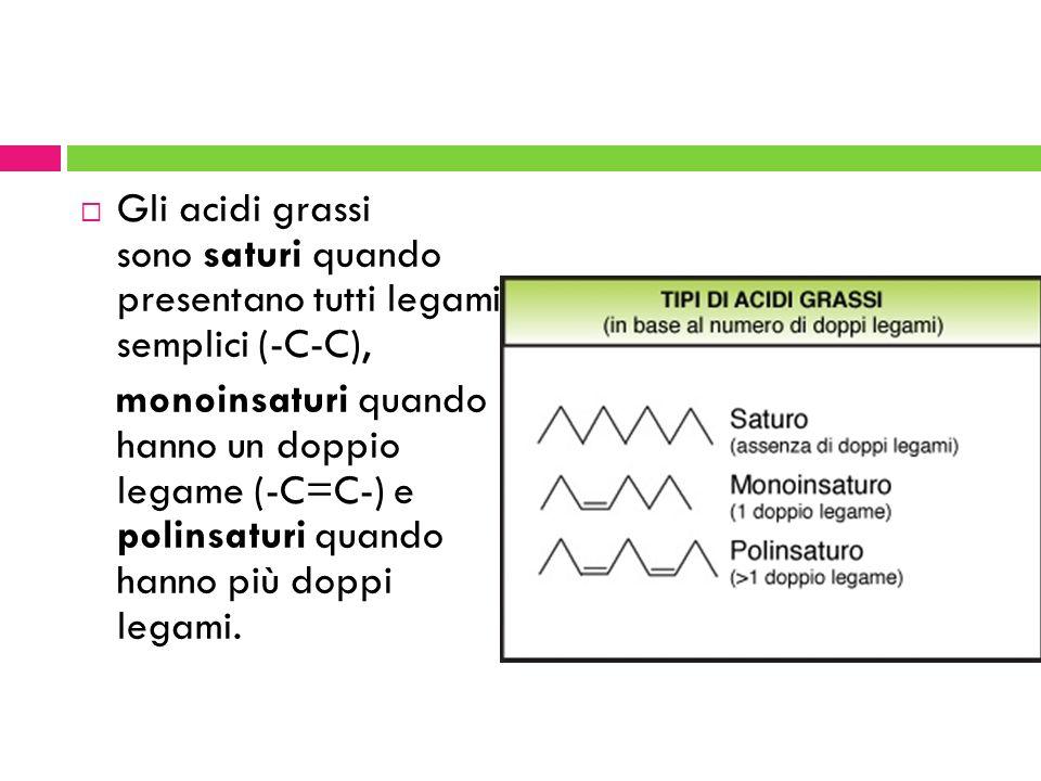 Gli acidi grassi sono saturi quando presentano tutti legami semplici (-C-C), monoinsaturi quando hanno un doppio legame (-C=C-) e polinsaturi quando h