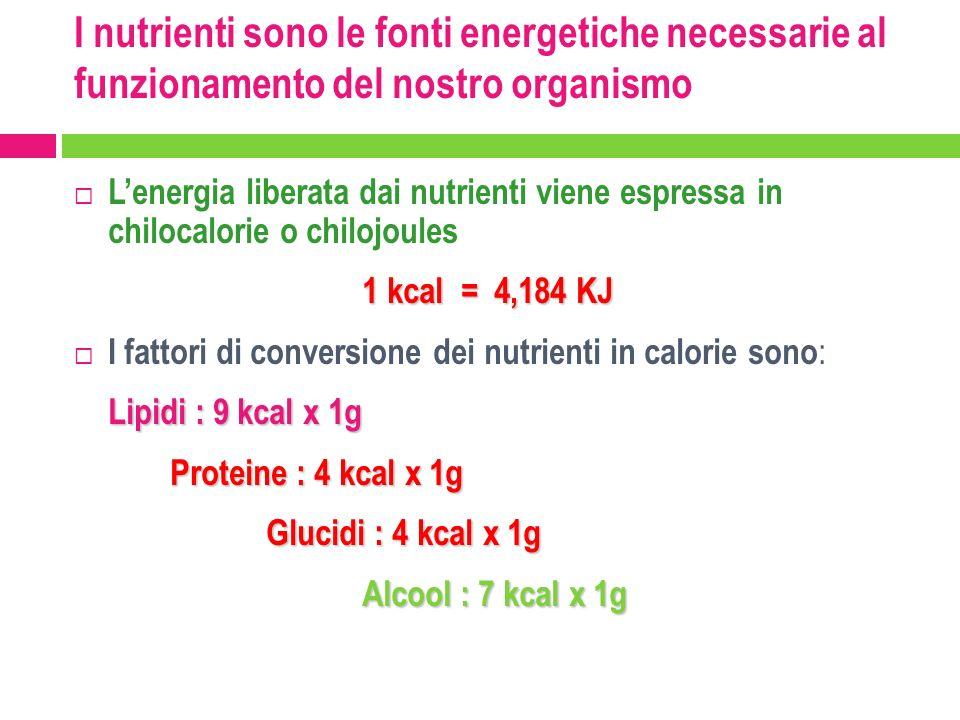 I nutrienti sono le fonti energetiche necessarie al funzionamento del nostro organismo Lenergia liberata dai nutrienti viene espressa in chilocalorie