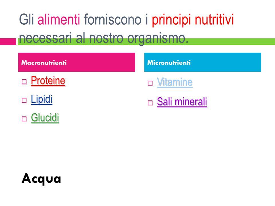 Gli alimenti forniscono i principi nutritivi necessari al nostro organismo. Proteine Proteine Lipidi Lipidi Glucidi Glucidi Acqua Vitamine Vitamine Sa