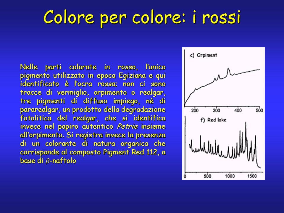 Nelle parti colorate in rosso, lunico pigmento utilizzato in epoca Egiziana e qui identificato è locra rossa; non ci sono tracce di vermiglio, orpimen