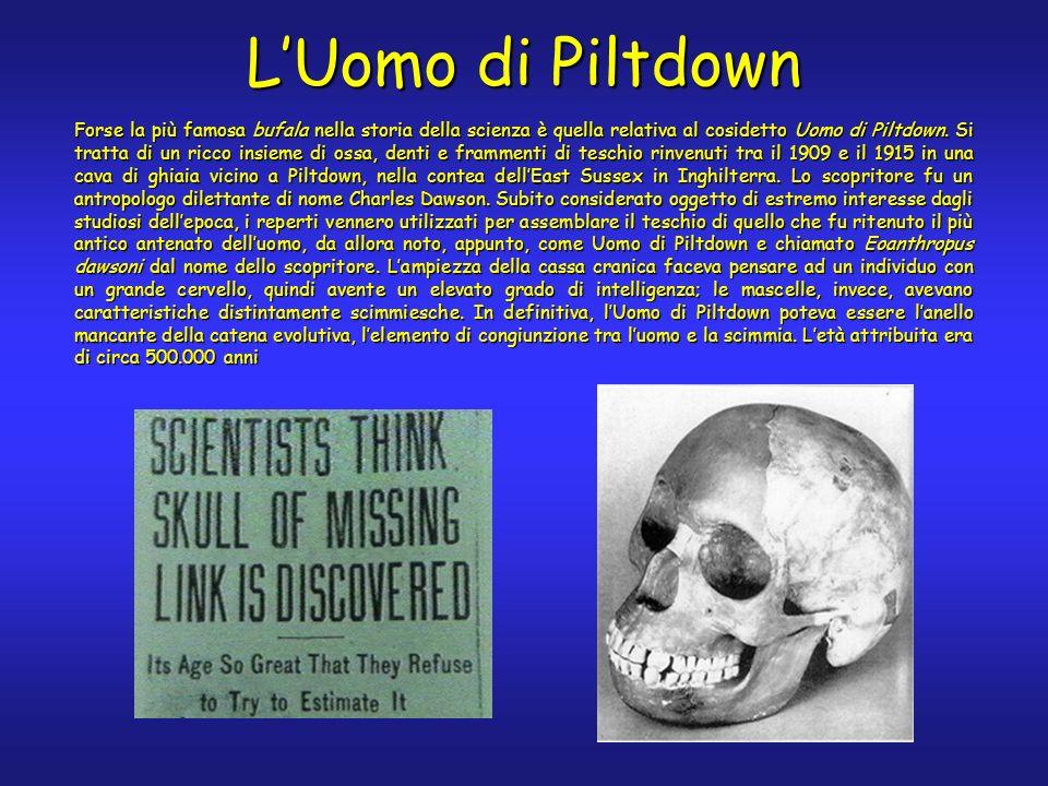 Forse la più famosa bufala nella storia della scienza è quella relativa al cosidetto Uomo di Piltdown. Si tratta di un ricco insieme di ossa, denti e