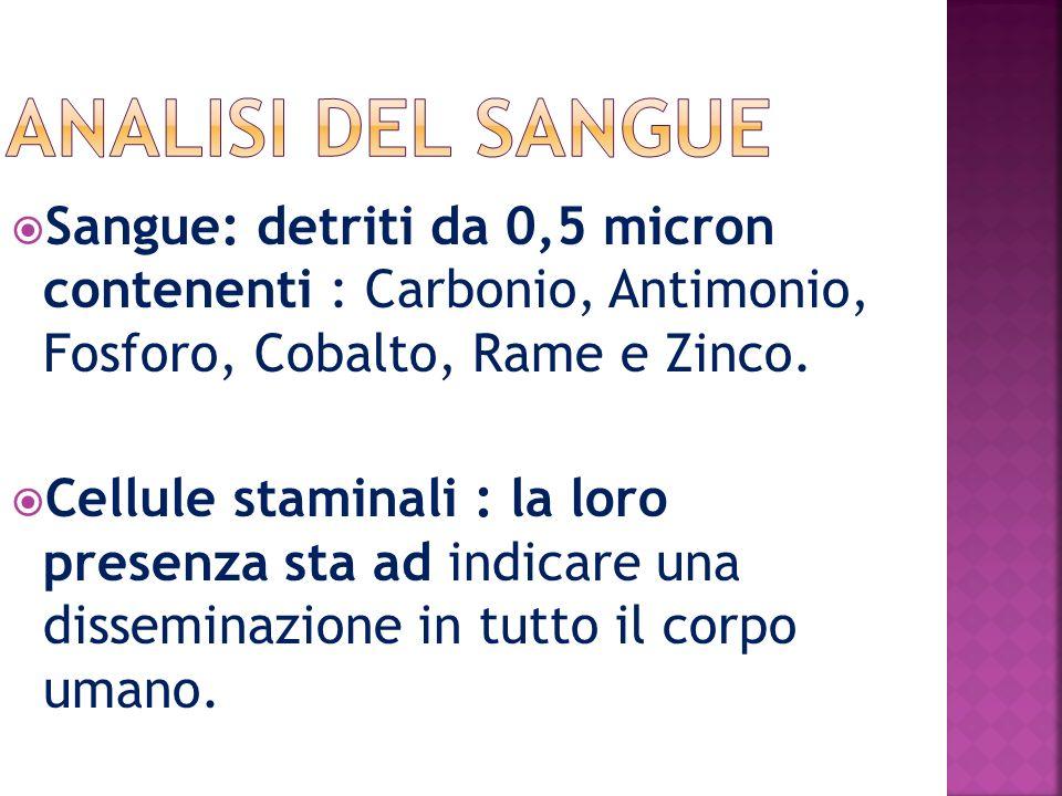 Sangue: detriti da 0,5 micron contenenti : Carbonio, Antimonio, Fosforo, Cobalto, Rame e Zinco.