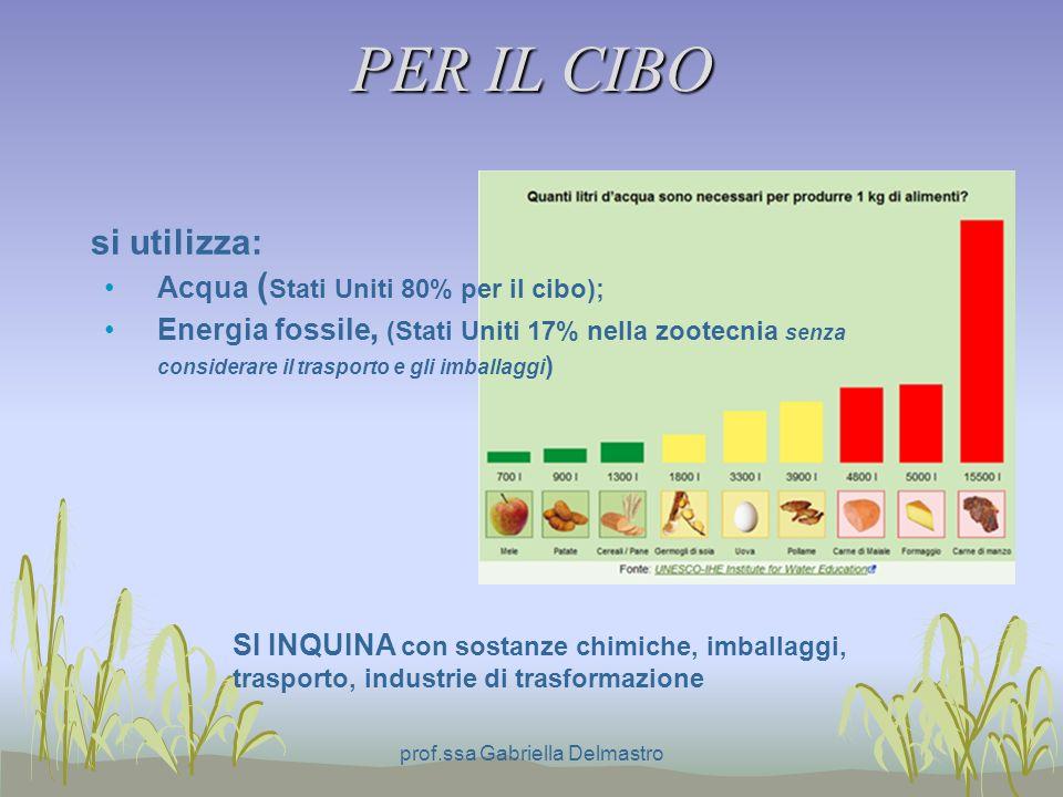 PER IL CIBO si utilizza: Acqua ( Stati Uniti 80% per il cibo); Energia fossile, (Stati Uniti 17% nella zootecnia senza considerare il trasporto e gli