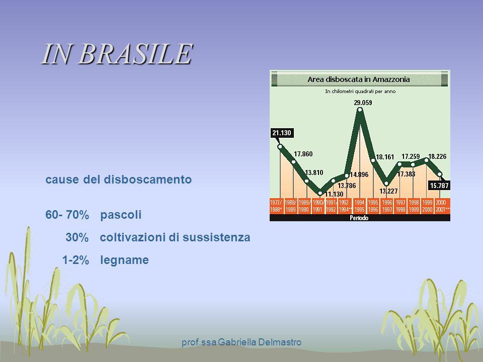 IN BRASILE prof.ssa Gabriella Delmastro cause del disboscamento 60- 70% pascoli 30% coltivazioni di sussistenza 1-2% legname