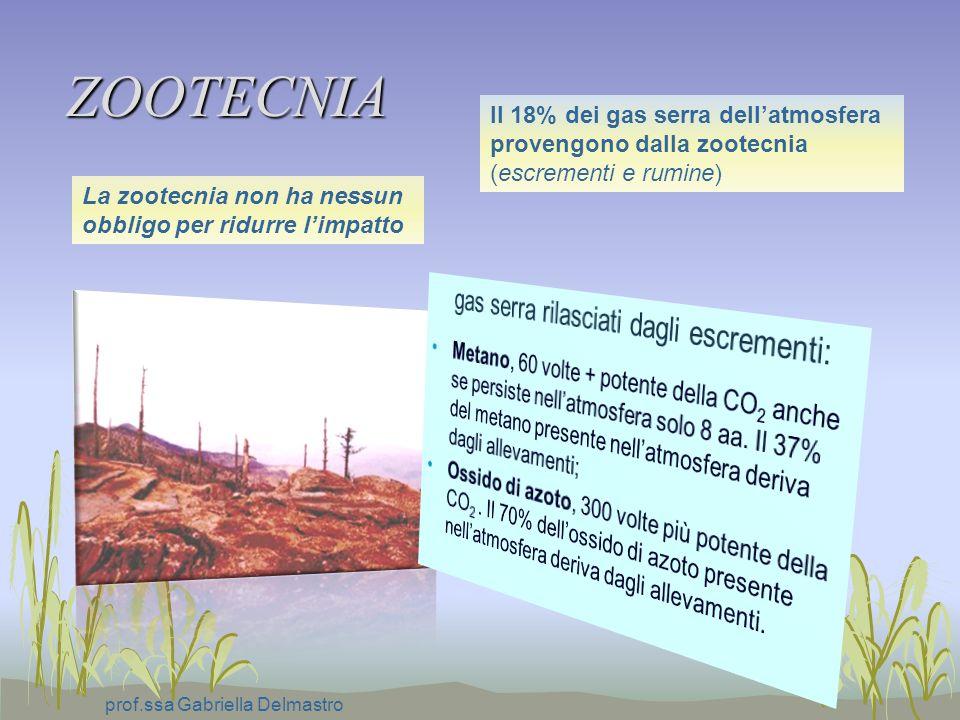 ZOOTECNIA prof.ssa Gabriella Delmastro Il 18% dei gas serra dellatmosfera provengono dalla zootecnia (escrementi e rumine) La zootecnia non ha nessun