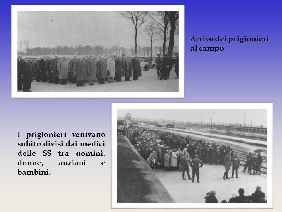 Arrivo dei prigionieri al campo I prigionieri venivano subito divisi dai medici delle SS tra uomini, donne, anziani e bambini.