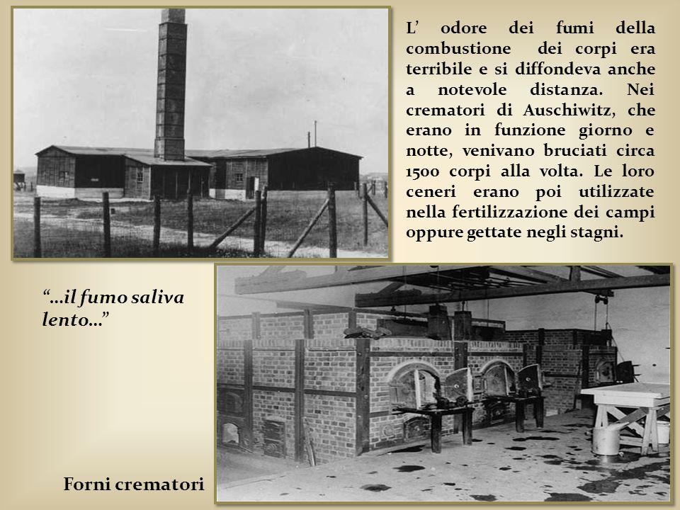 L odore dei fumi della combustione dei corpi era terribile e si diffondeva anche a notevole distanza. Nei crematori di Auschiwitz, che erano in funzio