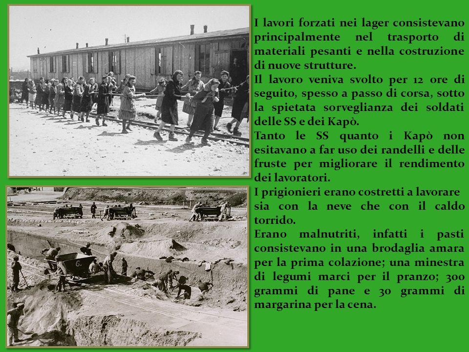 I lavori forzati nei lager consistevano principalmente nel trasporto di materiali pesanti e nella costruzione di nuove strutture. Il lavoro veniva svo