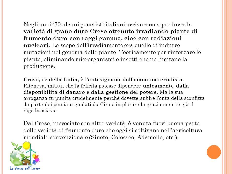 Negli anni 70 alcuni genetisti italiani arrivarono a produrre la varietà di grano duro Creso ottenuto irradiando piante di frumento duro con raggi gam