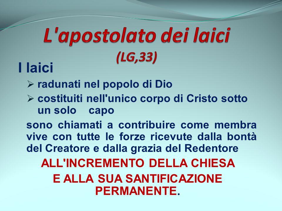 I laici radunati nel popolo di Dio costituiti nell'unico corpo di Cristo sotto un solo capo sono chiamati a contribuire come membra vive con tutte le