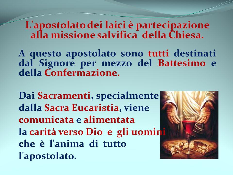 L'apostolato dei laici è partecipazione alla missione salvifica della Chiesa. A questo apostolato sono tutti destinati dal Signore per mezzo del Batte