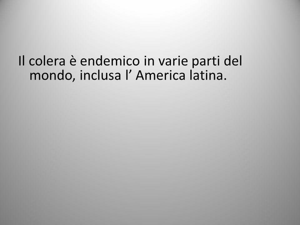 Il colera è endemico in varie parti del mondo, inclusa l America latina.