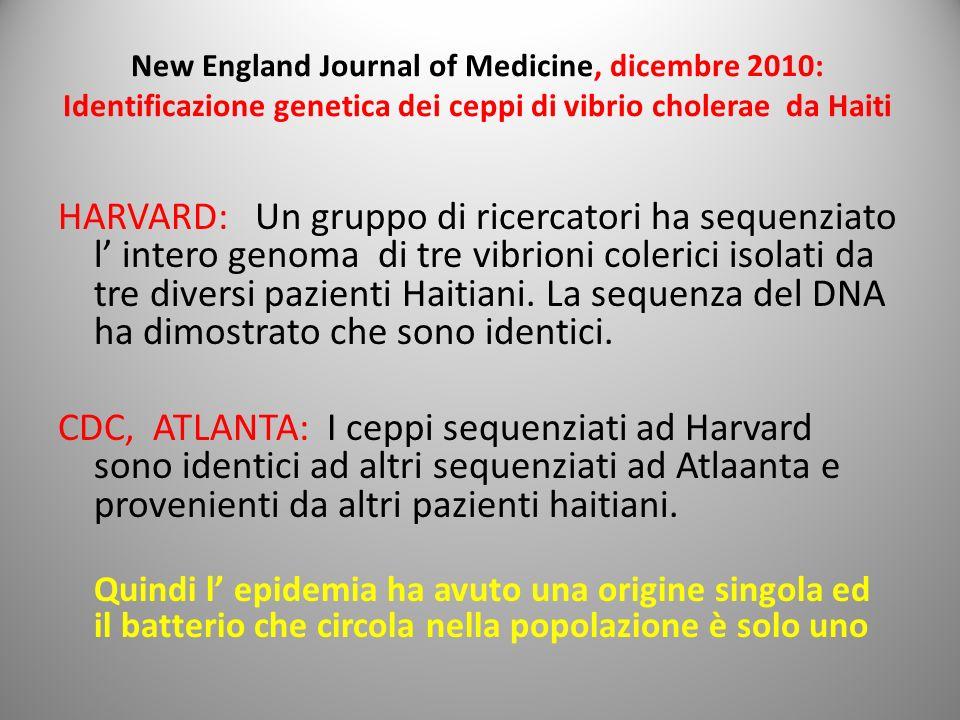New England Journal of Medicine, dicembre 2010: Identificazione genetica dei ceppi di vibrio cholerae da Haiti HARVARD: Un gruppo di ricercatori ha se