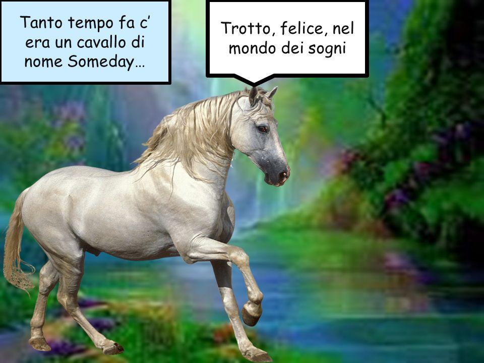Tanto tempo fa c era un cavallo di nome Someday… Trotto, felice, nel mondo dei sogni