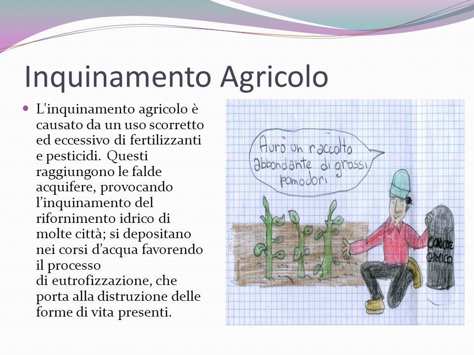 Inquinamento Agricolo L'inquinamento agricolo è causato da un uso scorretto ed eccessivo di fertilizzanti e pesticidi. Questi raggiungono le falde acq