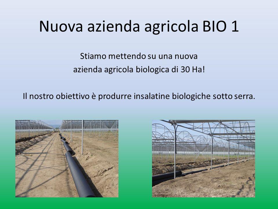 Nuova azienda agricola BIO 1 Stiamo mettendo su una nuova azienda agricola biologica di 30 Ha.