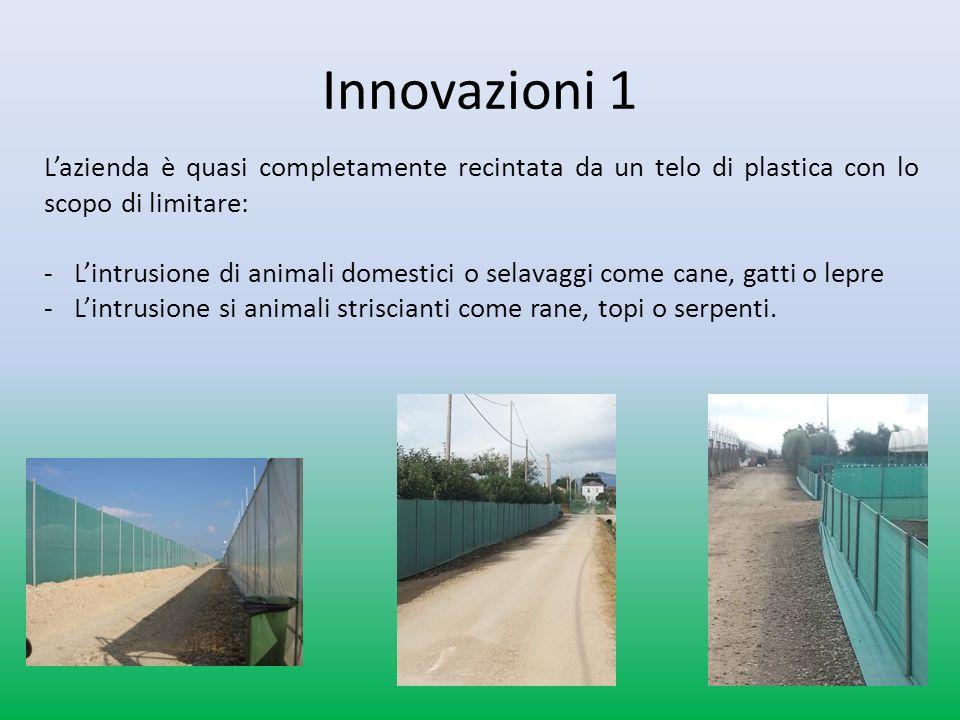Innovazioni sullazienda BIO 1 -Il punto più alto di ogni serra è di circa 5metri.