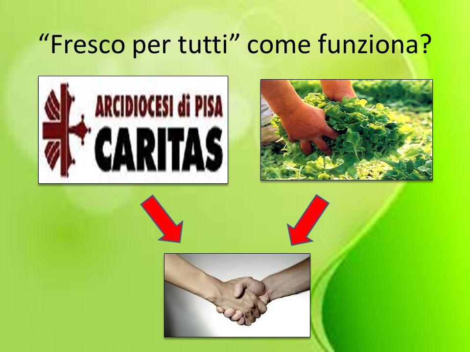 In provincia di Pisa: 6000 Aziende agricole 136 aziende specializzate in orticoltura.