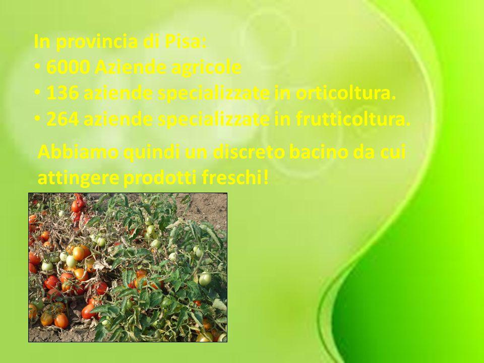 In provincia di Pisa: 6000 Aziende agricole 136 aziende specializzate in orticoltura. 264 aziende specializzate in frutticoltura. Abbiamo quindi un di