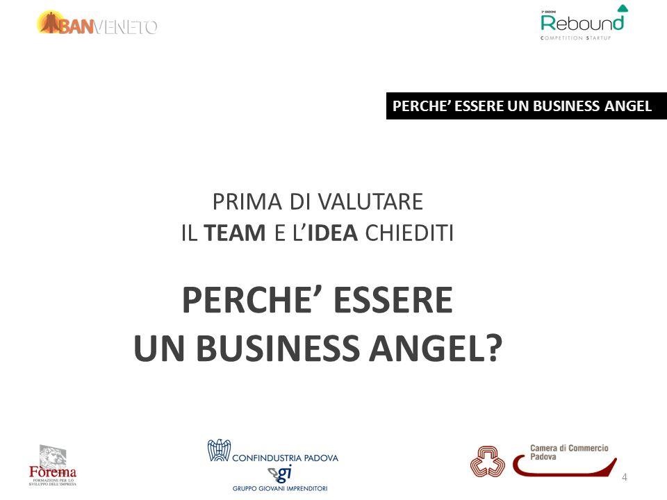 PRIMA DI VALUTARE IL TEAM E LIDEA CHIEDITI PERCHE ESSERE UN BUSINESS ANGEL? PERCHE ESSERE UN BUSINESS ANGEL 4