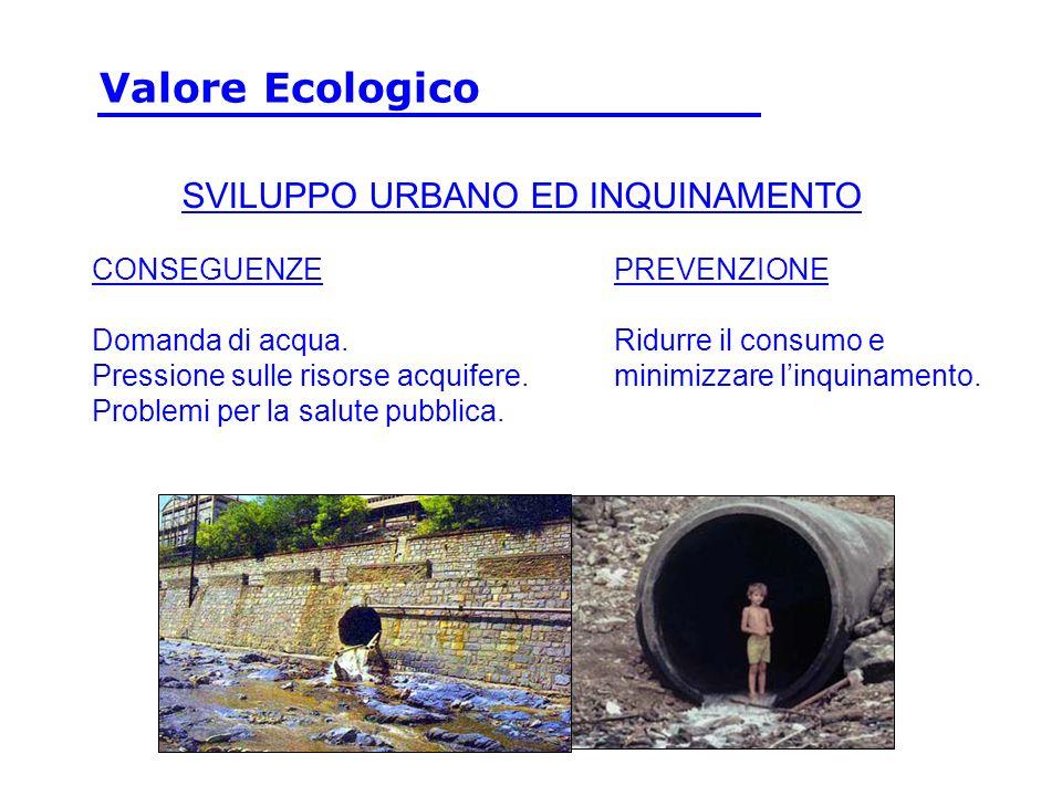 CONSEGUENZE Domanda di acqua. Pressione sulle risorse acquifere. Problemi per la salute pubblica. PREVENZIONE Ridurre il consumo e minimizzare linquin