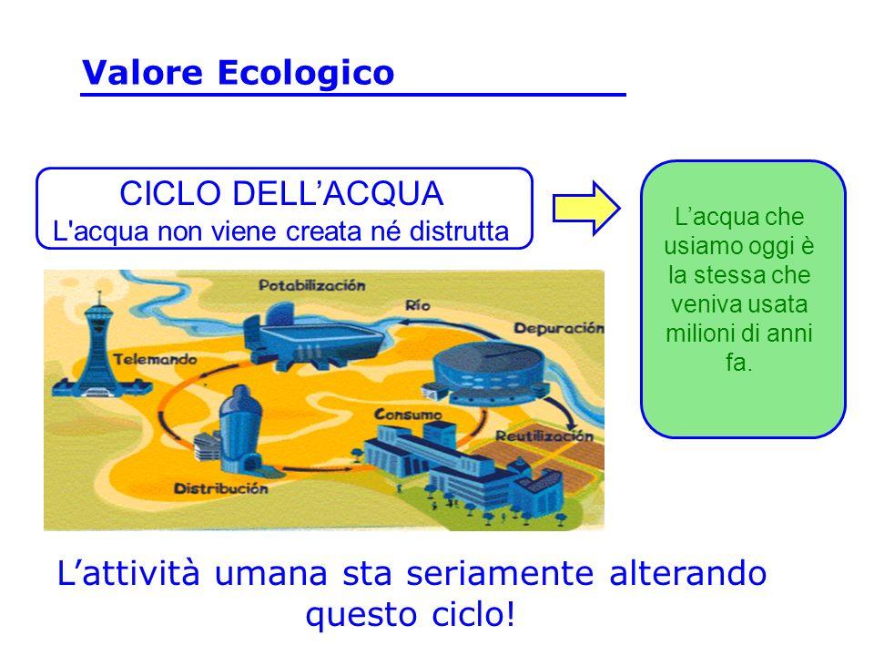 CICLO DELLACQUA L'acqua non viene creata né distrutta Lattività umana sta seriamente alterando questo ciclo! Lacqua che usiamo oggi è la stessa che ve