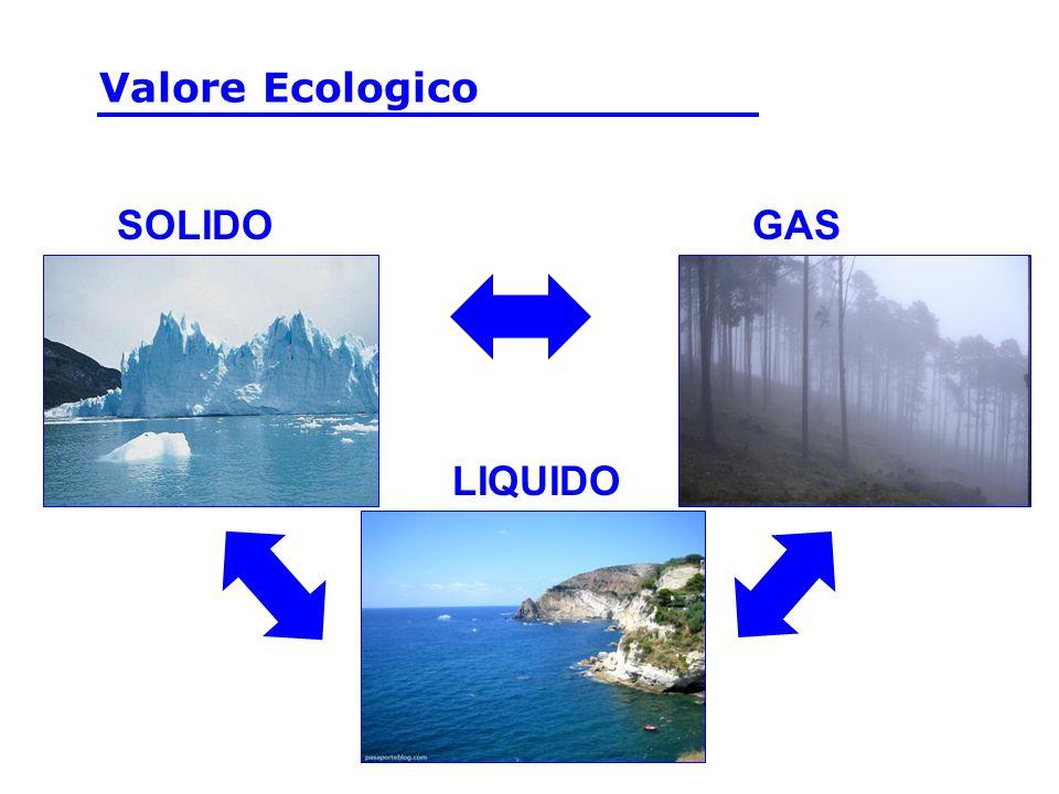 -pH pH tra 6.0 and 8.0 :Maggior parte delle piante acquatiche e degli animali Se il pH of dellacqua è oltre il limite sotto il quale gli esseri viventi si adattano, essi possono morire, smettere di riprodursi e migrare.