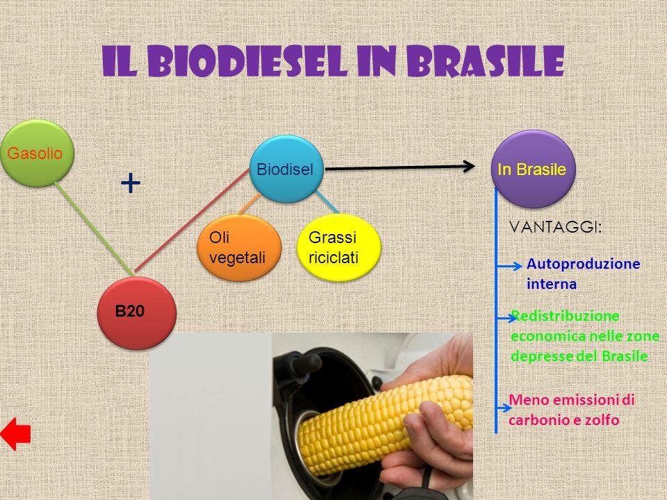 Il Biodiesel in Brasile Gasolio Biodisel B 20 Oli vegetali Grassi riciclati + In Brasile Autoproduzione interna Redistribuzione economica nelle zone d