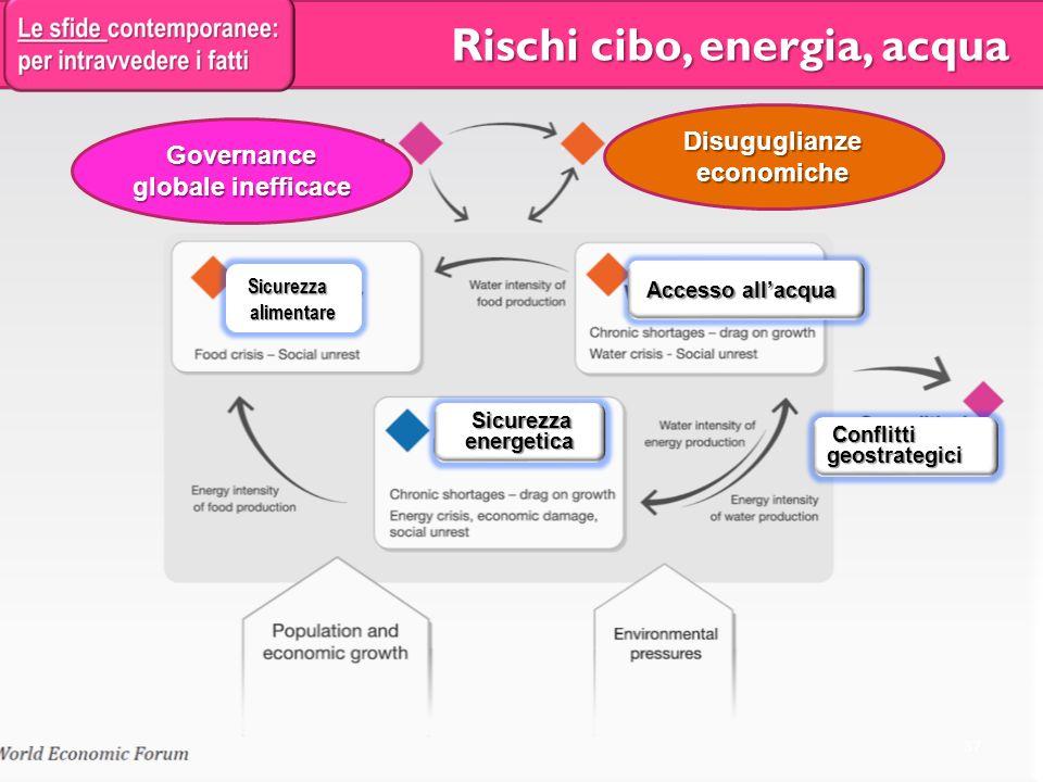 Governance globale inefficace Disuguglianze economiche Sicurezza Sicurezza alimentare alimentare Accesso allacqua Accesso allacqua Sicurezza energetica Sicurezza energetica Conflitti geostrategici Conflitti geostrategici Governance globale inefficace Rischi cibo, energia, acqua Rischi cibo, energia, acqua 37