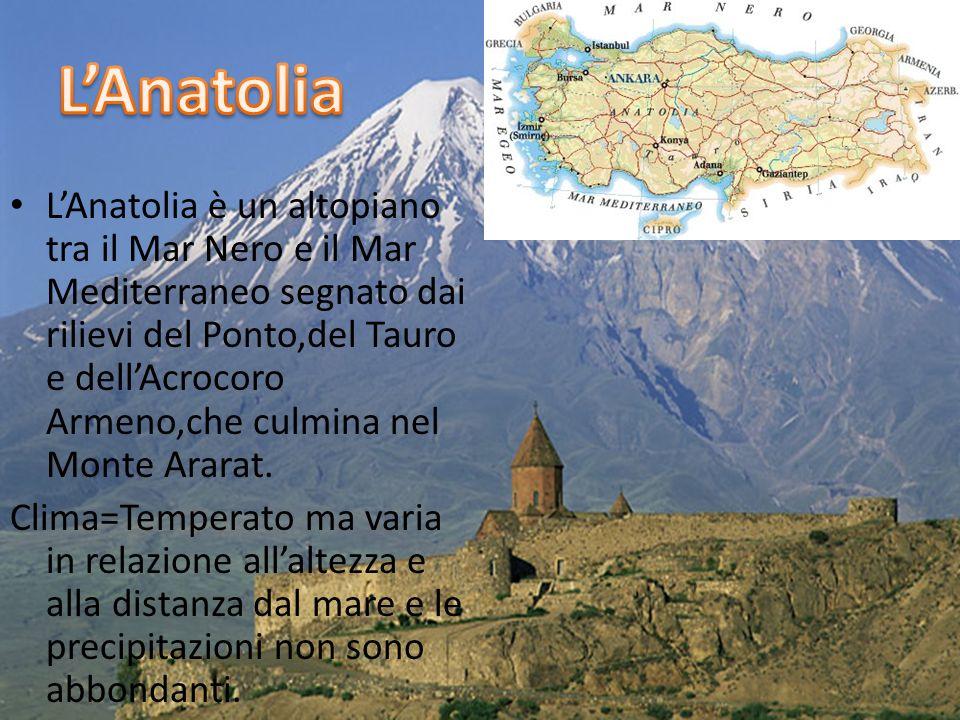 LAnatolia è un altopiano tra il Mar Nero e il Mar Mediterraneo segnato dai rilievi del Ponto,del Tauro e dellAcrocoro Armeno,che culmina nel Monte Ararat.