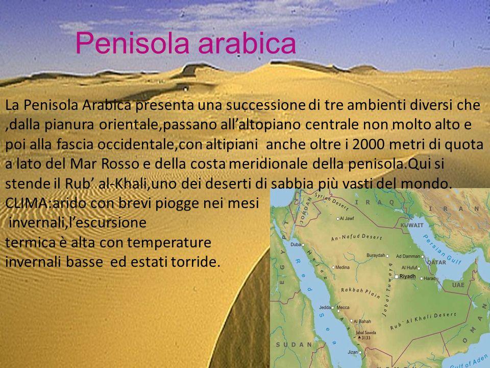 Penisola arabica La Penisola Arabica presenta una successione di tre ambienti diversi che,dalla pianura orientale,passano allaltopiano centrale non molto alto e poi alla fascia occidentale,con altipiani anche oltre i 2000 metri di quota a lato del Mar Rosso e della costa meridionale della penisola.Qui si stende il Rub al-Khali,uno dei deserti di sabbia più vasti del mondo.