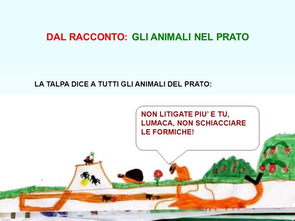 DAL RACCONTO: GLI ANIMALI NEL PRATO LA TALPA DICE A TUTTI GLI ANIMALI DEL PRATO: NON LITIGATE PIU E TU, LUMACA, NON SCHIACCIARE LE FORMICHE!