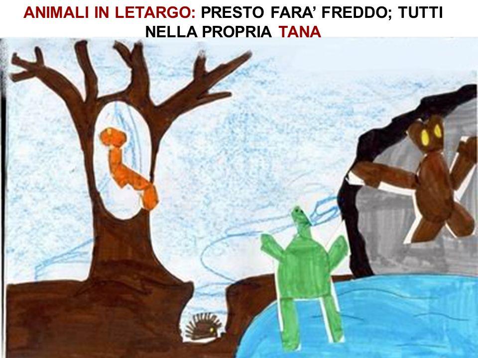 ANIMALI IN LETARGO: PRESTO FARA FREDDO; TUTTI NELLA PROPRIA TANA