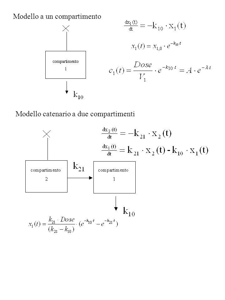 Modello a un compartimento Modello catenario a due compartimenti