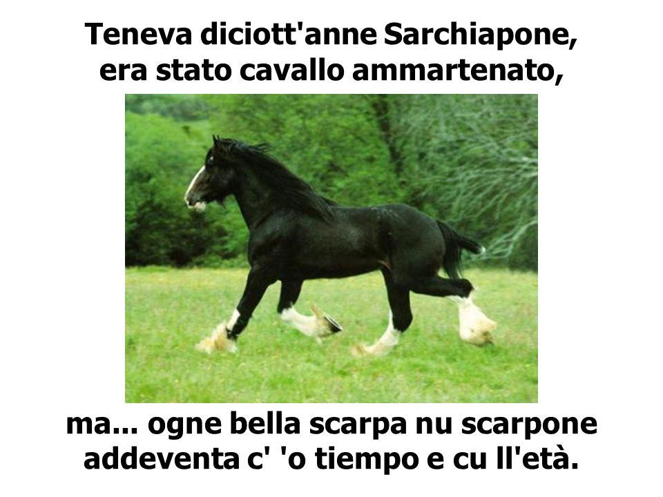 Teneva diciott'anne Sarchiapone, era stato cavallo ammartenato, ma... ogne bella scarpa nu scarpone addeventa c' 'o tiempo e cu ll'età.