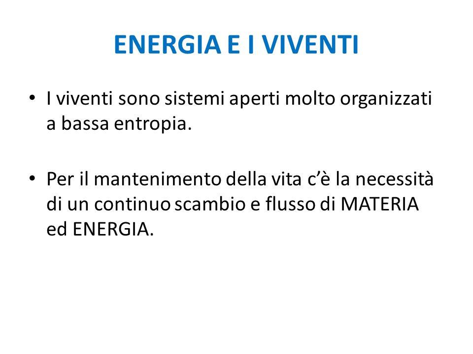 ENERGIA E I VIVENTI I viventi sono sistemi aperti molto organizzati a bassa entropia. Per il mantenimento della vita cè la necessità di un continuo sc