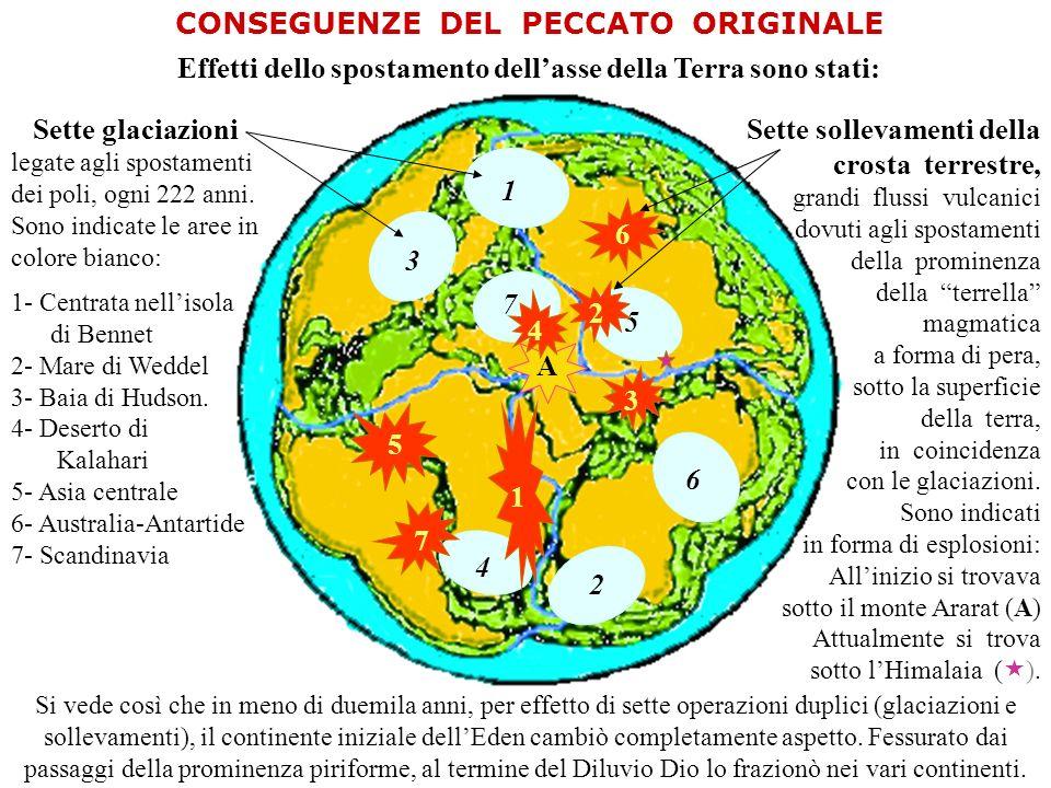 3 2 1 4 5 6 7 1 A 2 3 4 5 6 7 CONSEGUENZE DEL PECCATO ORIGINALE Effetti dello spostamento dellasse della Terra sono stati: Sette glaciazioni legate agli spostamenti dei poli, ogni 222 anni.